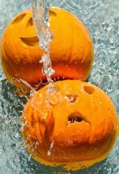 A quick tip for making carved pumpkins last longer: soak 4-6 hours in bleach solution, 1 tsp bleach per gallon