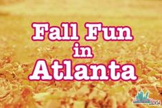 Guide to Fall in Atlanta with Kids: Things to do with kids this Fall in Atlanta