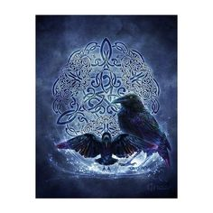 Mystic Raven Celtic Raven Triskele Pagan Wiccan Print Brigid Ashwood ❤ liked on Polyvore featuring home, home decor and wall art Celtic Raven, Celtic Art, Wiccan Art, Pagan, Earth Book, Book Of Kells, Triple Goddess, Architecture Tattoo, Printmaking