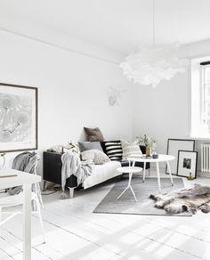 Beautiful Small Scandinavian Student Apartment