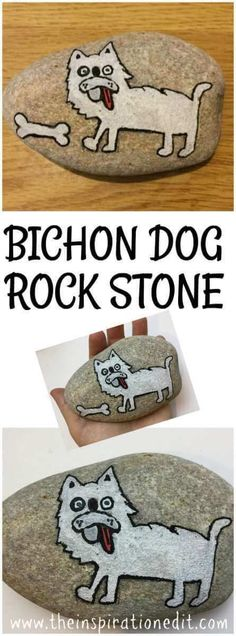 Bichon Dog Rock Stone Painting · The Inspiration Edit