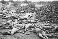 Эксгумированные тела советских граждан после освобождения Смоленска