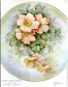 Pink Wild Roses #49 by Geraldine Rarick China Painting Study China Painting, Ceramic Painting, Hand Painted Plates, Plates On Wall, Tole Painting Patterns, Paint Patterns, Jar Art, Porcelain Ceramics, Watercolor Flowers