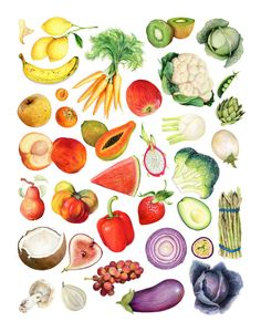 Archival quality print of my original illustration featuring a variety of glistening fruits and vegetables, arranged to showcase their myriad of