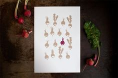 11 Sweet and Spicy Radish Prints for Your Kitchen Walls — Faith's Daily Find 06.04.15