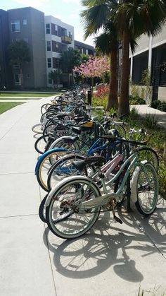 Student housing bicycles