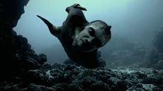 Mermaids: The New Evidence, evil, horned, scary mermaid,