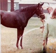 Ruffian at 2yo with trainer Frank Whitely