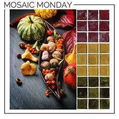 It's a #Thanksgiving Harvest this #MosaicMonday with rich #colors from our Origins #glasstile collection. / #mosaic #mosaics #tile #tiles #tiling #tiled #interior #interiors #interiordesigner #interiordesign #idcdesigners #walltile #tiledesign #homedesign #homedecor #instahome #instadecor #interior #interiorinspiration #walltile #walltiles #dscolors #color #backsplashideas #tileaddiction #backsplash by crossvilleinc