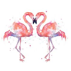Two Flamingo Birds Watercolor Painting, Love Birds, Anniversary Art,... ($10) ❤ liked on Polyvore featuring home, home decor, wall art, watercolor painting, bird painting, flamingo wall art, watercolour painting and watercolor bird paintings
