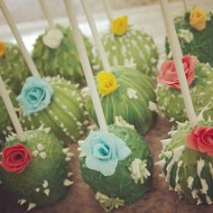 Image result for cactus cake