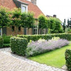 Rosenbogen Modern rozen buxus en hortensia garden3 gardens garden