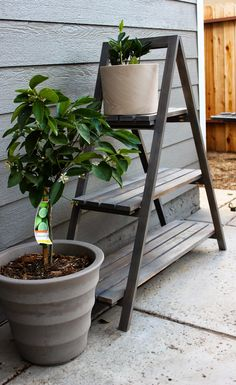 Chic Little House: DIY A Frame Plant Stand