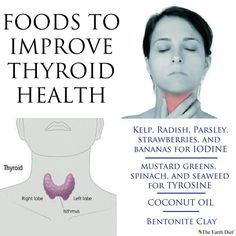 Foods to improve thyroid health