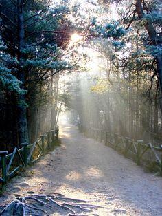 Bialogora, Poland
