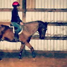 My old horse a breeding stock paint :)