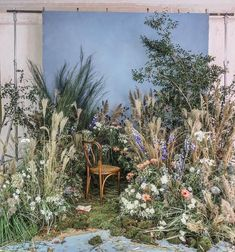 inspired by Renoir [ a behind the scenes look from our Cartier shoot today with Ann Street Studio – prop styling by Zio & Sons – Putnam & Putnam crea… - Deco Floral, Arte Floral, Vitrine Design, Deco Studio, Flower Installation, Prop Styling, Event Design, Backdrops, Scene