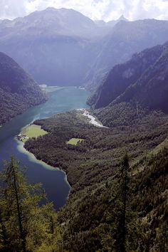 Vista from Archenkanzel over Königssee - Bavaria, Germany by Peter S.