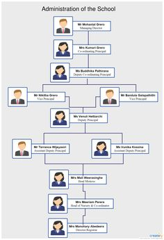 An Org Chart Showing The Typical Hierarchy In The Hr Department