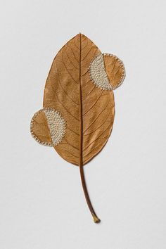"""At the intersection of thread, leaves, and her steady hands, artist Susanna Bauer (previously here and here) produces miraculous little sculptures that fuse the natural world with the handmade. Her crocheted embellishments stitched into dry leaves introduce unusual patterns or create hybrid """"assembl"""