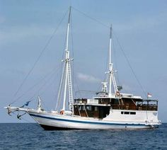RAJA AMPAT – MISOOL – TRITON BAY DIVE PROGRAMS - Rate: From US$265.00 USD per person for 1 Nights