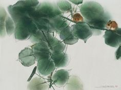 lin shun-shiung | Lin Shun-Shiung