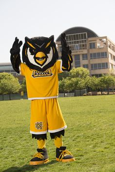 23 best Kennesaw State University images on Pinterest