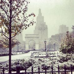 snowing in nyc. (washington square park, greenwich village). With Amor Towles in Rules of Civilty.
