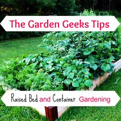 The Garden Geeks raised bed tips. Come join The Garden geeks on Facebook!