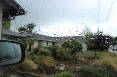 I love going on drives in the rain.