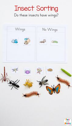 Preschool Insect Theme Sorting Worksheet + Bug Activities - Fun with Mama #preschool #homeschool #insect #sorting #finemotor #bugs