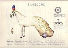 Codex Seraphinianus, il libro più strano del mondo