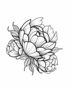 Peonies-owl-idea-tattoo-girl-draw-a-rose-idea-design-and-flower . - Peonies-owl-idea-tattoo-girl-draw-a-rose-idea-design-and-flower … # peonyowlideata … – Peonie - Realistic Flower Drawing, Simple Flower Drawing, Beautiful Flower Drawings, Floral Drawing, Peony Drawing, Tattoo Sketches, Tattoo Drawings, Rosen Tattoo Arm, Neotraditional Tattoo