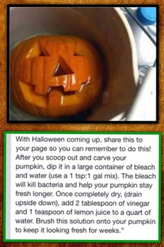 Preserve your pumpkin!! Do this plus rub petroleum jelly on all carved sides after soaking. This provides moisture