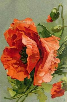 Three poppies, large central flower, half open buds above & below to right vintage postcard - C. Klein by Watercolor Flowers, Watercolor Art, Poppies Painting, Poppies Art, Flower Paintings, Painting Abstract, Red Poppies, China Painting, Arte Floral