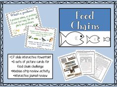 17 interactive slides with 6 sets of food chain cards for two challenges, super cool Moebius strip activity, and interactive journal templates.  Students will be sure to master food chains and associated vocabulary and have fun on their way! $