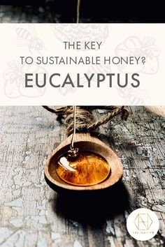 The secret ingredient in our sustainable honey claims is eucalyptus which is grown in Western Australia. Our bees forage on eucalyptus which, like bamboo, is a fast growing crop and when it's harvested, it's cut down, rather than being uprooted. This means that it can grow back quickly, making it a renewable material. Discover more over on our blog, and sign up to the  - you can get 20% off your first order. #honey #luxuryhoney #jarrahhoney #redgumhoney  #nectahive #antimicrobialhoney