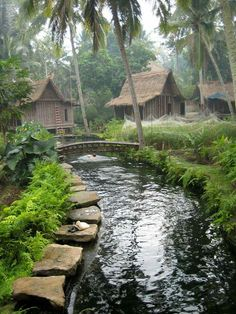 This is where I want to spend my days. Jungle House, Forest House, Tropical Houses, Tropical Garden, Jungle Resort, Beautiful Homes, Beautiful Places, Hut House, Bamboo Architecture