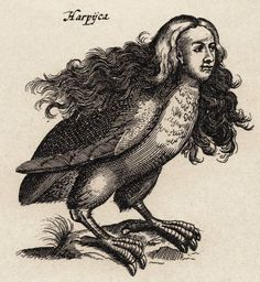 Greek Mythology Creatures | James Clayton's Monsterific Mythscape: Day XXX - Harpy