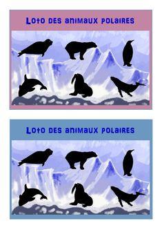 Projet sur la banquise, cahier des mots, dessin dirigé, tableau à double entrée, numération, aussi grand que, loto des animaux polaires, imagier des animaux polaires