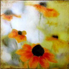 Encaustic photography  Daisies original encaustic art mixed
