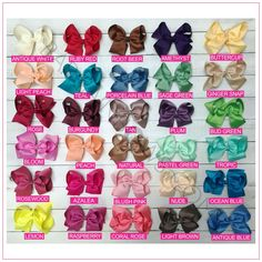 6 inch Solid Color Hair Bow Bundle Sassy Girl