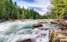 Download wallpapers mountain river, spring, mountain landscape, green forest, stones, water
