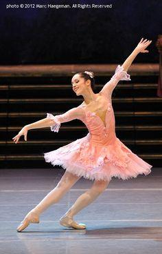 The Sleeping Beauty - Royal Ballet of Flanders, 2012