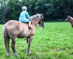 An #Amish girl spends her Sunday afternoon riding bareback on a Belgian #drafthorse.