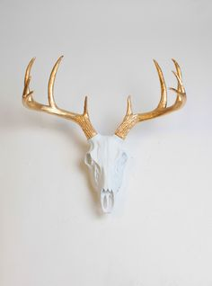 Faux White and Gold deer skull mount European-inspired deer wall mount. This large deer skull & antlers is the perfect animal-friendly, yet classic home accent. Find more colors & styles at White Faux Taxidermy