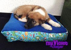 Dog bed Almohadón de perro muy cómodo My Violet  myvioletdesigns.com