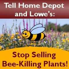 You thought that pretty flowering plant you bought at the garden center might attract bees to your garden. But as it turns out, that lovely rose bush may actually be coated in the very type of pesticide that's killing bees. Tell Home Depot and Lowe's: Stop Selling Bee-Killing Garden Plants!