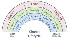a typical church life cycle