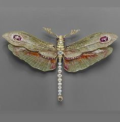 "Art Nouveau Philippe Wolfers Belgian ""Dragonfly"" pendant-brooch 1904 Platinum, gold, enamel, diamond, ruby and pearl Dragonfly Jewelry, Dragonfly Pendant, Insect Jewelry, Animal Jewelry, Dragonfly Art, Jewelry Show, Jewelry Art, Vintage Jewelry, Fine Jewelry"